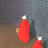 1985 novel The Handmaid's Tale is Amazon's #1 bestseller